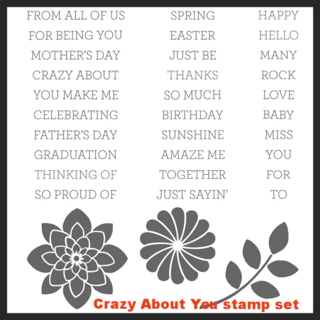 Unfrogettable Stamping | Crazy About You stamp set by Stampin' Up!