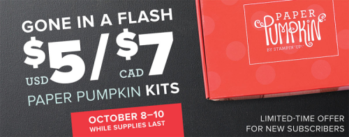 Unfrogettable Stamping | Paper Pumpkin Flash Sale for new subscribers!!