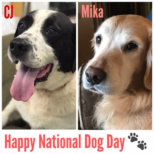 CJ and Mika