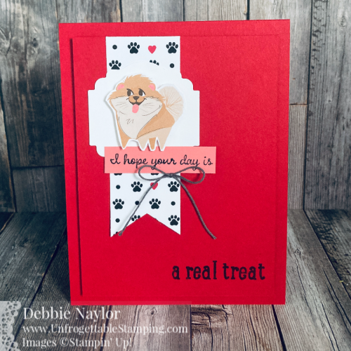 Unfrogettable Stamping | Sumday Fun Day CASE'd card featuring the Pampered Pets product suite from Stampin' Up!