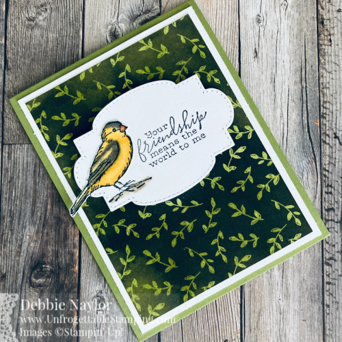 Unfrogettable Stamping | Sunday Fun Day SAB card set featuring the Beautifully Penned DSP and Free as a Bird stamp set from Stampin' Up!